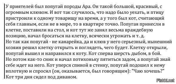 Попалось на просторах инета)))