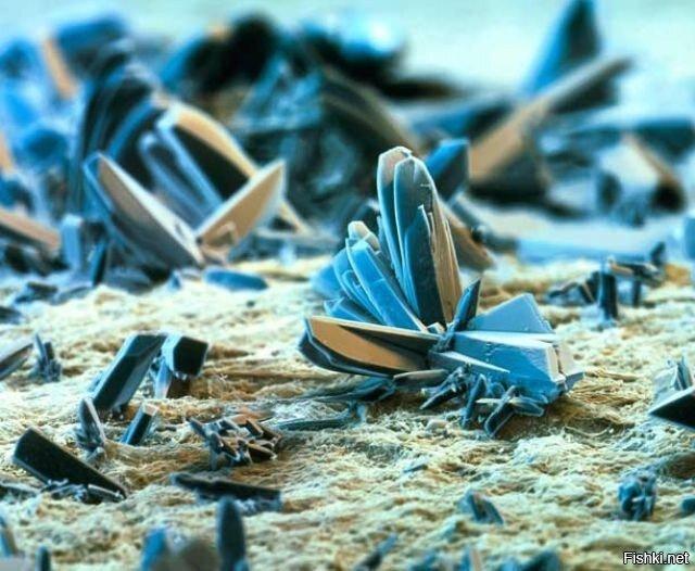 Пепел под микроскопом