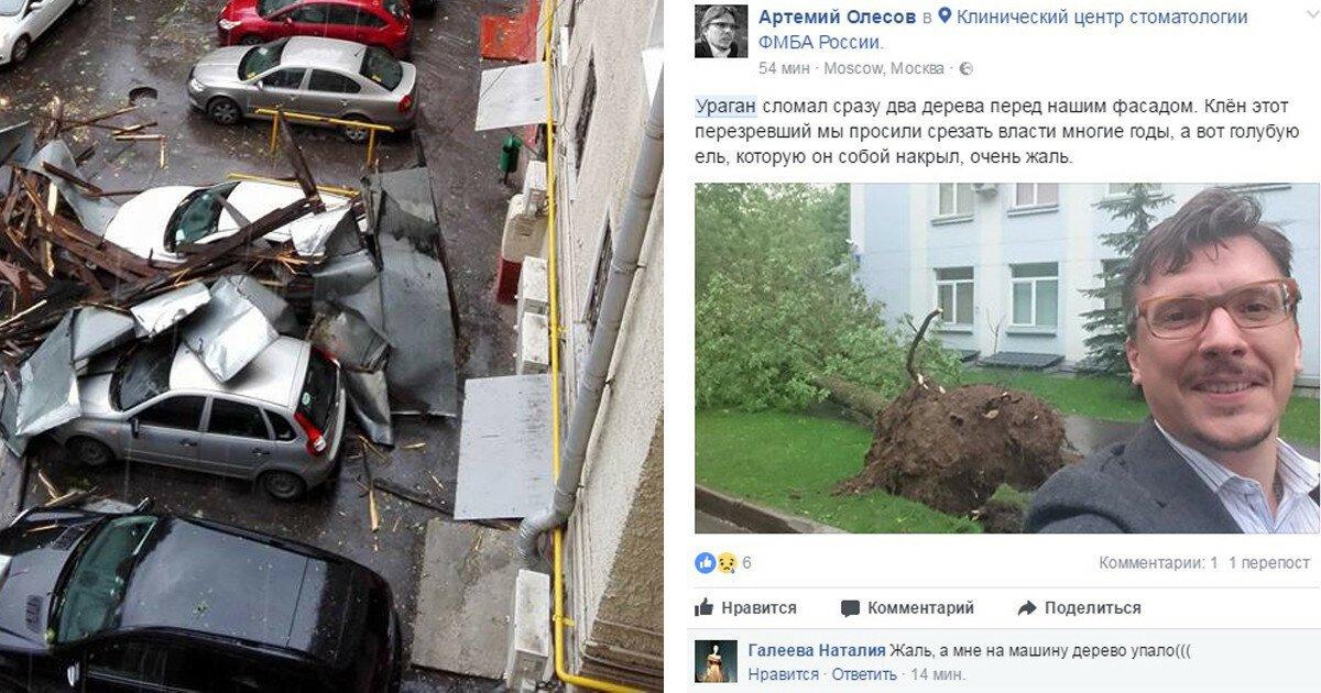 Унесенные ветром: фото и видео московского апокалипсиса