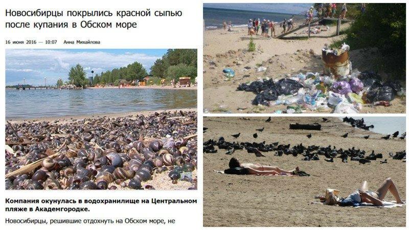 Купаться запрещено! Только в страшном сне можно оказаться на таких пляжах России