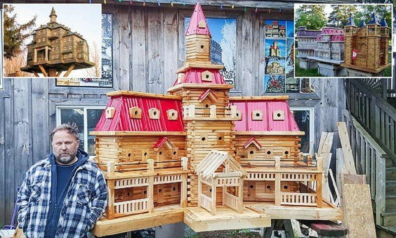 Плотник на пенсии строит потрясающие виллы для птиц