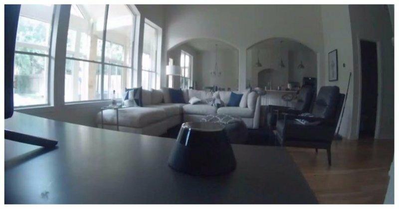 Отец установил камеру, чтобы узнать, нарушают ли его дети правило о запрете телевизора. Вот что камера записала в последний раз