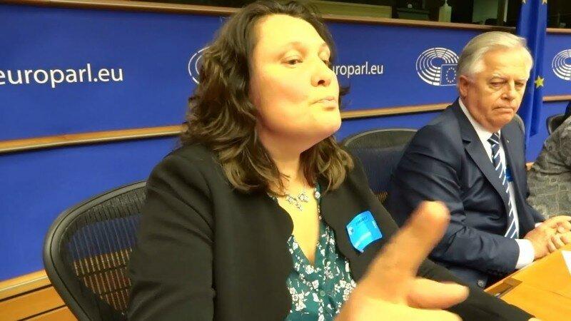 "Монтян Европарламенту: ""в Украине процветает нацистский режим"""