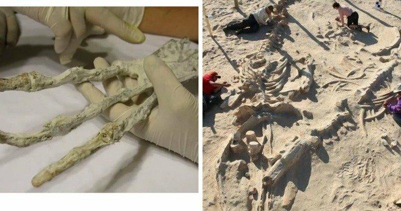 15 самых загадочных находок, обнаруженных в пустынях по всему миру