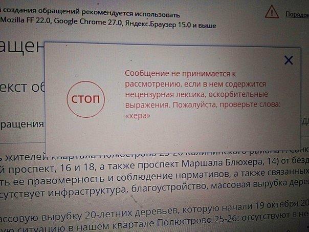 Петербурженка не смогла оставить жалобу на сайте Госдумы из-за «нецензурного» названия проспекта