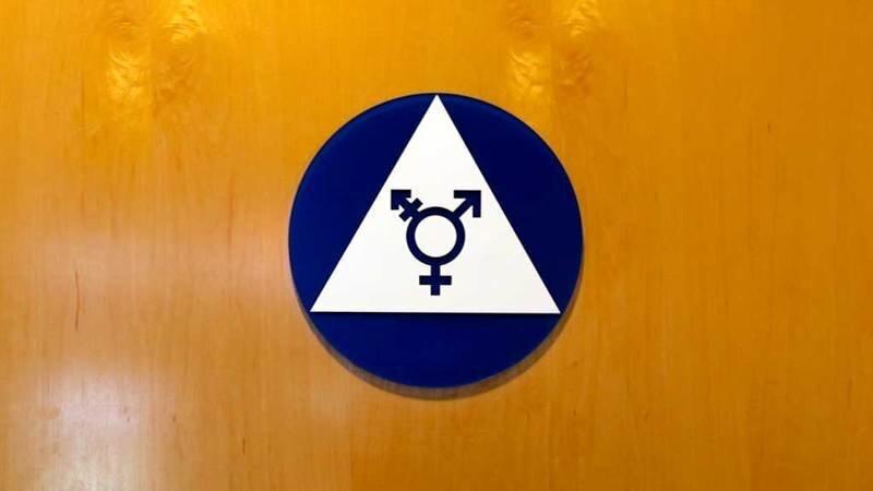 Конституционный суд Германии разрешил регистрировать «третий пол» в ЗАГСах