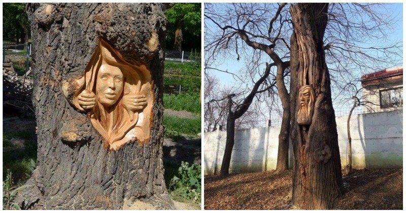 Румынский художник творит деревянные чудеса бензопилой