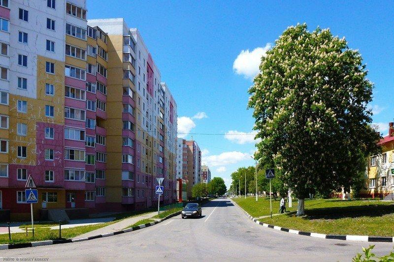 Город Строитель Белгородская область