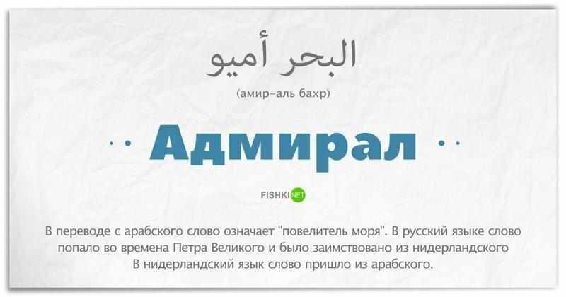 15 слов, которые на самом деле заимствованы из арабского