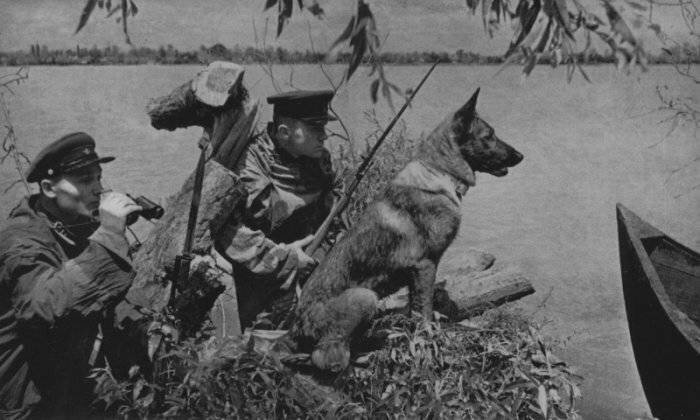 Пограничные войска НКВД Советского Союза в начале Великой войны