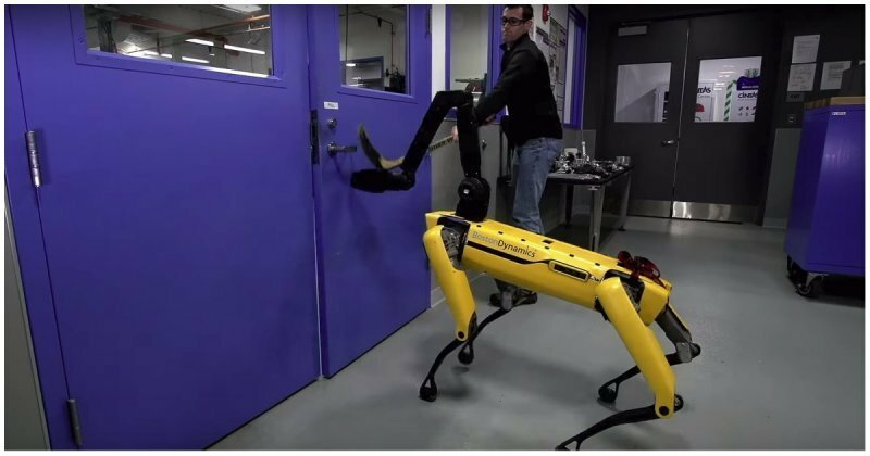 Инженеры из Boston Dynamics продолжают издеваться над роботами