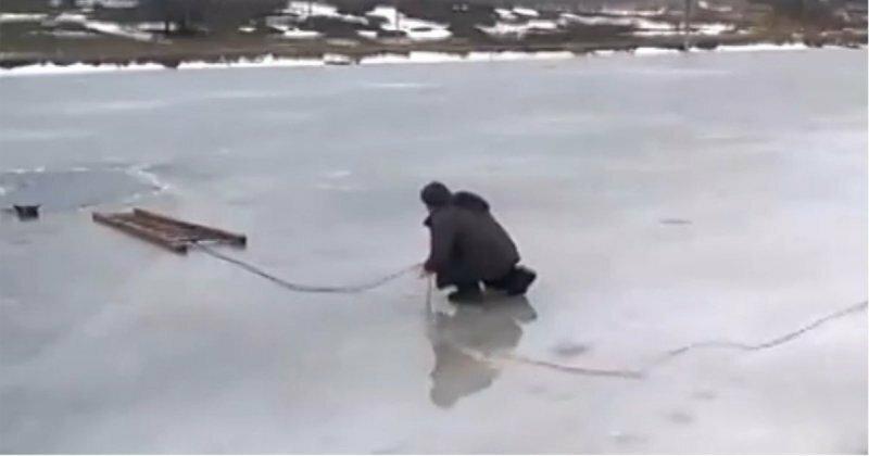 Спасение провалившейся под лёд собаки