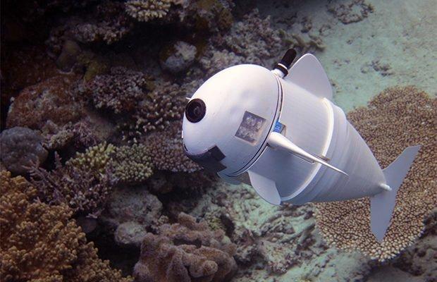 В США создали реалистичную рыбу-робота