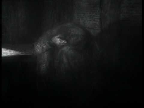 «Шине́ль» — незаконченый мультфильм в кукольной и перекладочной техникe режис...