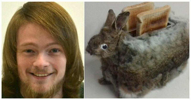 Студент-дизайнер к Пасхе сделал тостер из мертвого кролика