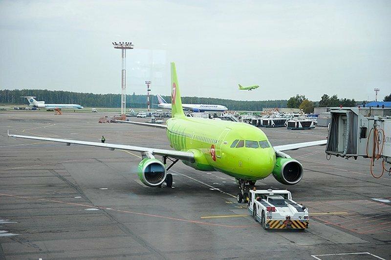 В московском аэропорту днище самолёта пробили золотыми слитками