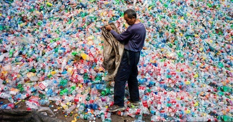 Ученые создали фермент, способный уничтожать пластиковый мусор
