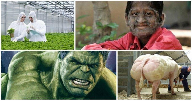 ГМО: бояться нельзя питаться! Запятую поставите сами. Запись прямого эфира на Fishki.net
