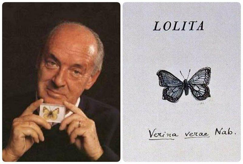 Тайные послания в книгах Набокова: что значили бабочки для жены великого писателя?