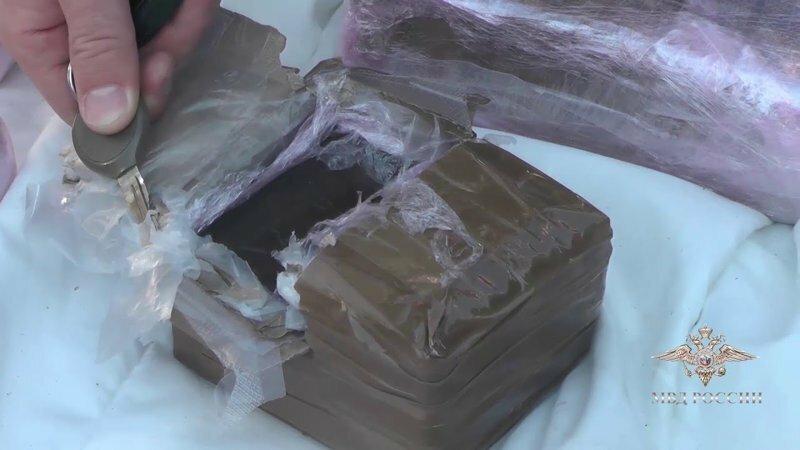В Красносельском районе задержаны наркоторговцы с 40 кг гашиша - оперативное видео