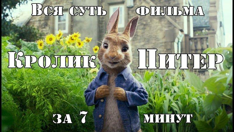 """Вся суть фильма """"Кролик Питер"""" за 7 минут"""