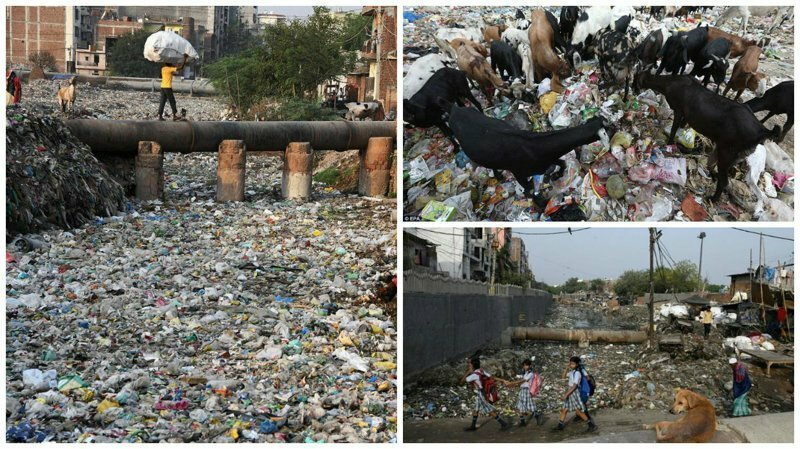 Жизнь в пластмассовом аду: трущобы Дели тонут в мусоре