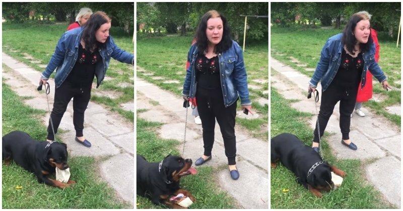 Неадекватная женщина решила погулять со своей собакой без намордника возле детской площадки