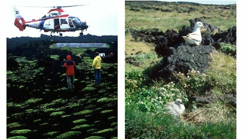 Остров Сюртсей - запретная территория Исландии