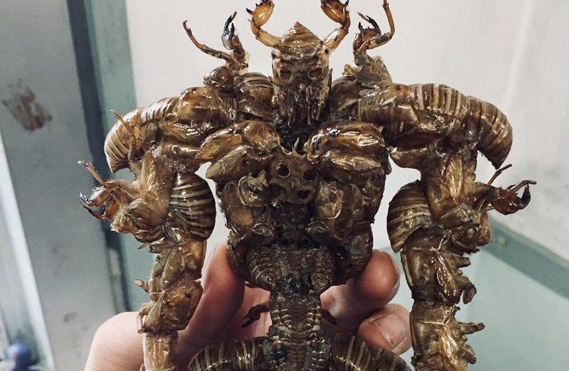 Школьник из Японии сделал уникальную статуэтку монстра из насекомых