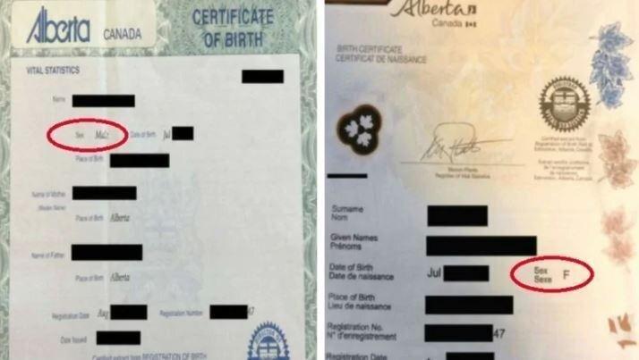 Канадец сменил пол, чтобы меньше платить за страховку