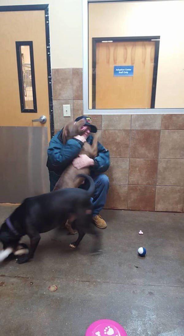 Мужчина пришел выкупить своих собак из приюта, слова сотрудницы заставили его заплакать!