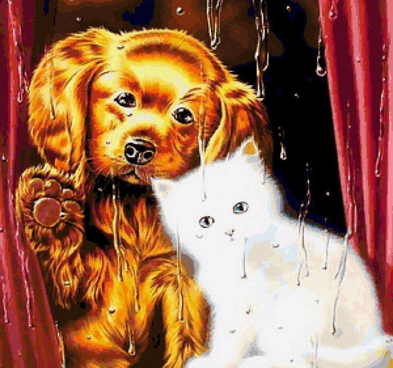 Дождь, вечер, коты и собаки