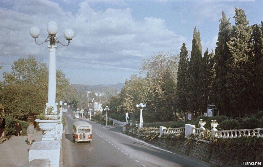 Пролетарский подъем (Курортный проспект) в 1958 году