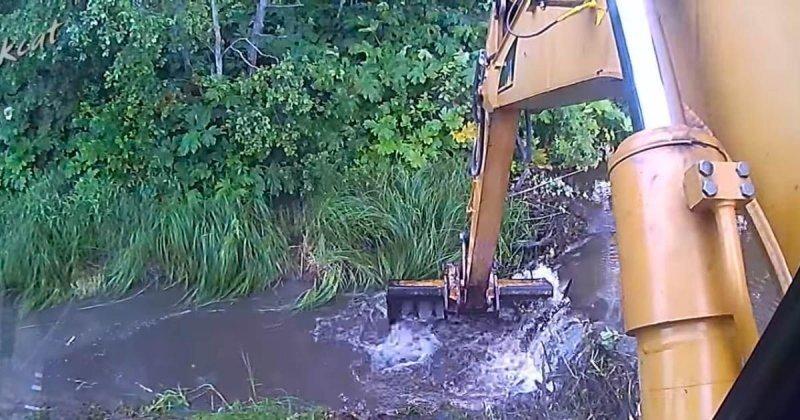 Разрушение плотины бобра экскаватором