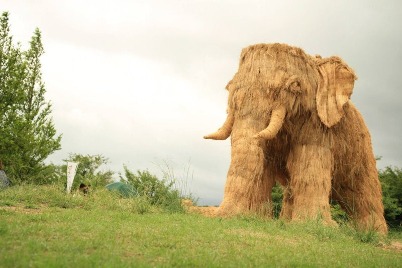 В Японии прошёл очередной фестиваль с гигантскими соломенными животными Wara Art