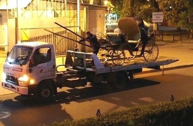 Лошадь заказала услугу «трезвый водитель»: карету эвакуировали в центре Ростова