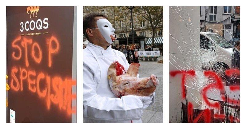 Во Франции задержали группу веганов, терроризирующих фермеров и владельцев сырных магазинов