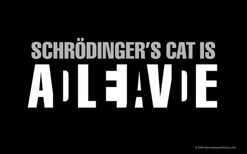 Переосмысление эксперимента с котом Шредингера ломает квантовую механику