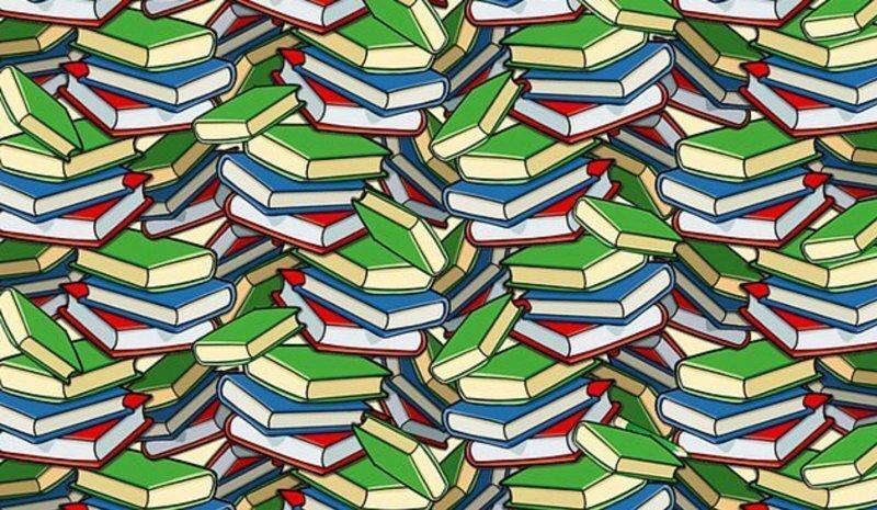 Новая головоломка: сможете отыскать карандаш среди книг за 19 секунд?