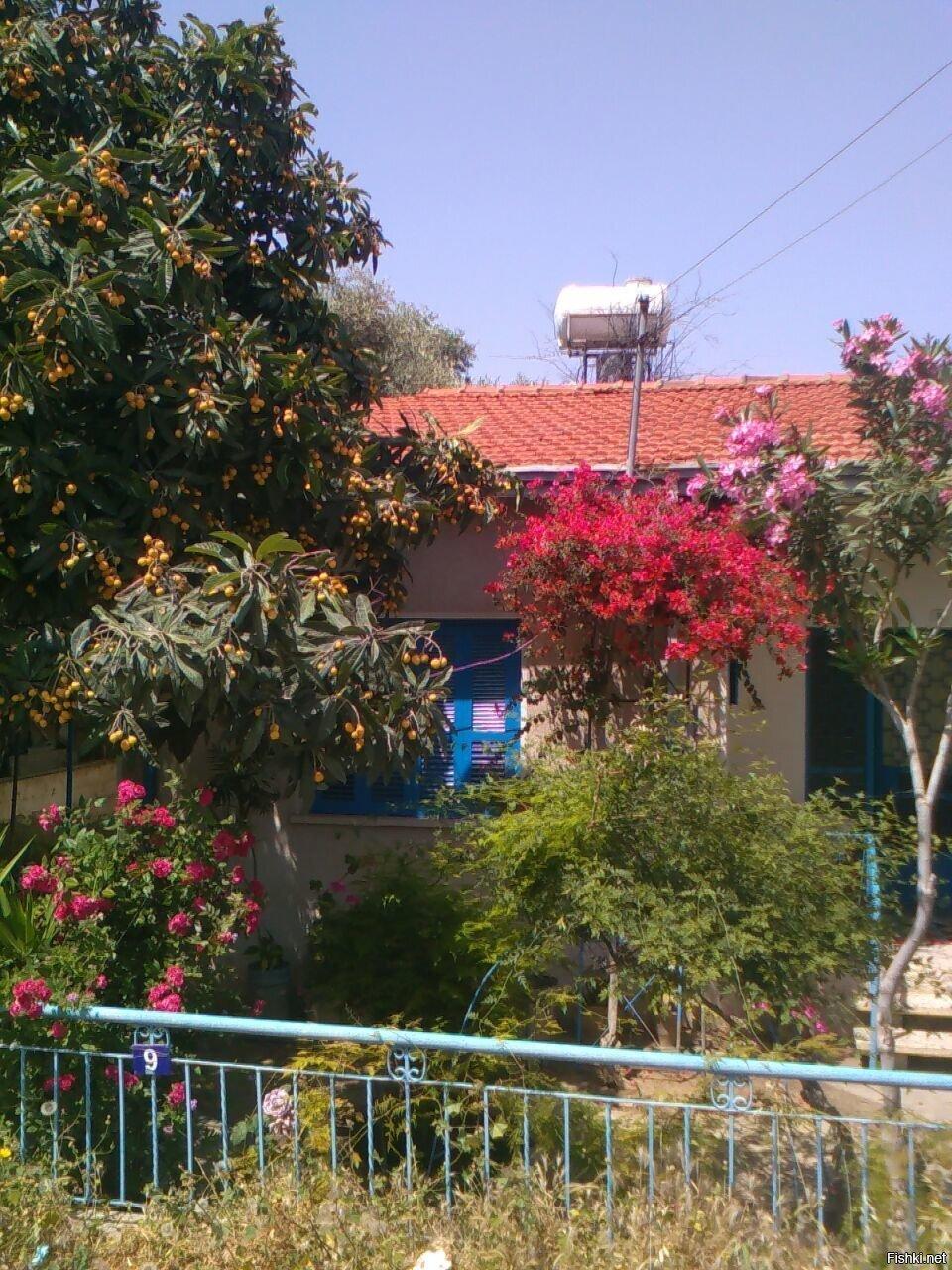 """Типичное жилище кипрского """"нищеброда"""""""