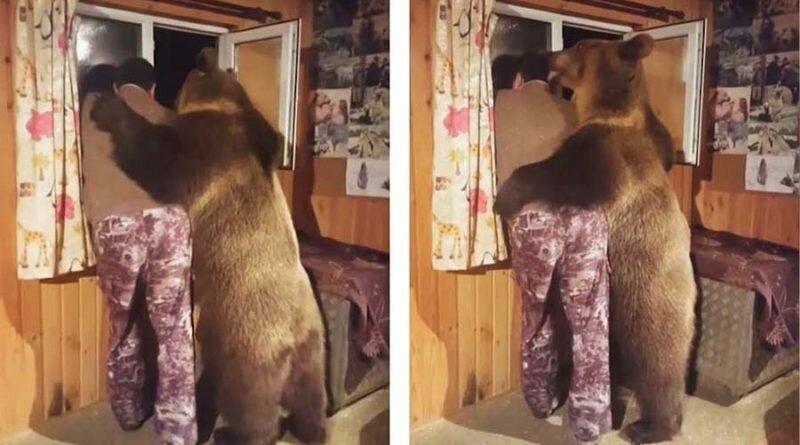 В одной из российских семей живёт огромный одомашненный медведь — и он, походу, неплохо устроился