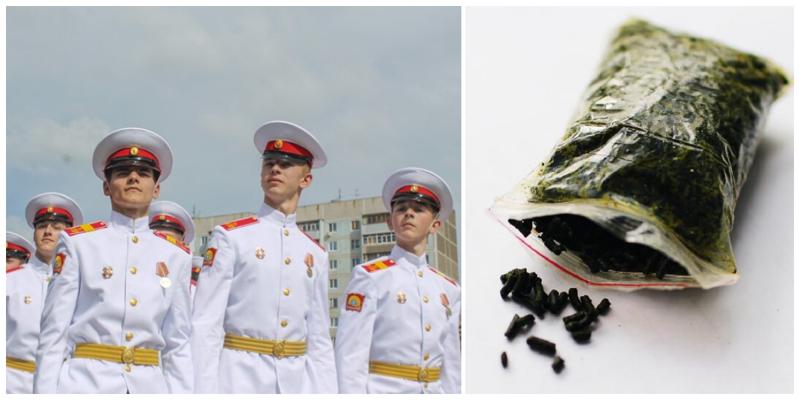 Ульяновские суворовцы могли подхватить опасных личинок через насвай