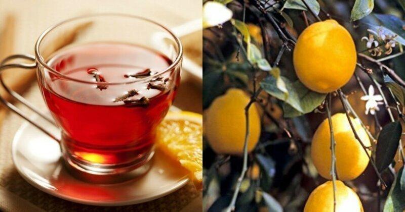 В США назвали лимоны предметом роскоши и богатства для россиян