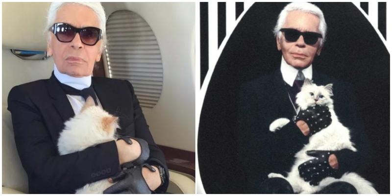Часть наследства покойного Лагерфельда достанется его любимой кошке