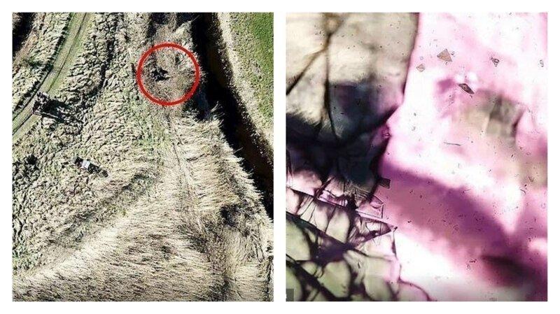 Охотник расстрелял шпионский дрон зоозащитников