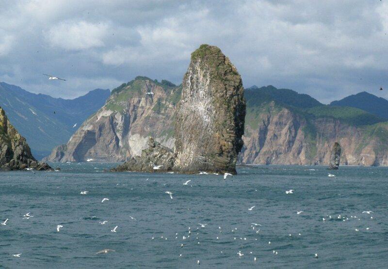 Камчатка. Морская прогулка по Авачинской бухте
