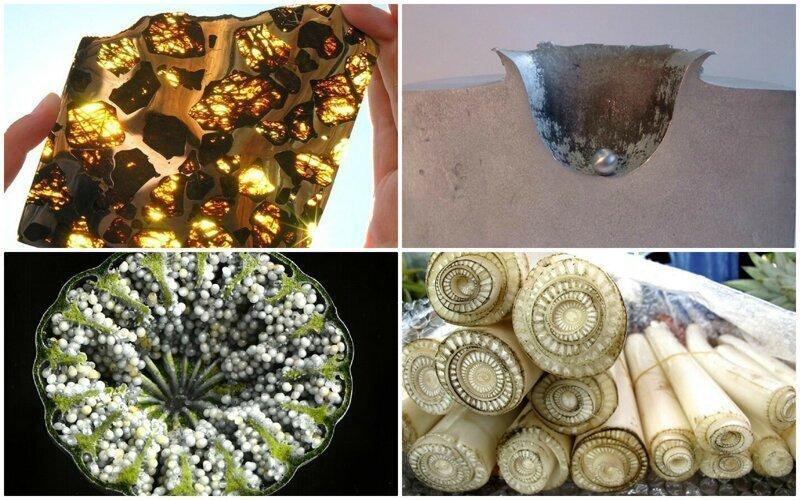 30 любопытных фото, показывающих внутренности вещей в разрезе