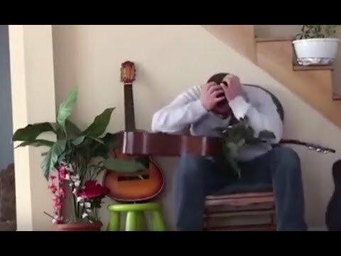 Кот отомстил хозяину