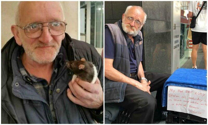 У бездомного из Сиднея украли любимую крысу - полиция города на ушах