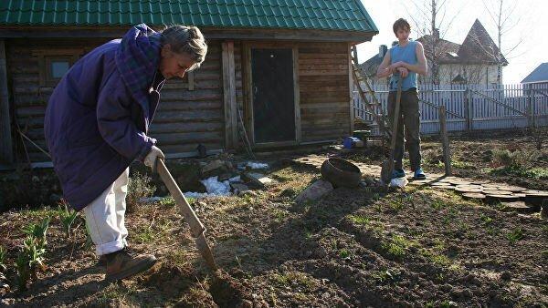 Огородная болезнь. Как можно подорвать здоровье на садовом участке